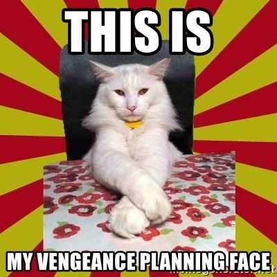 Dictator Cat - this is my vengeance planning face