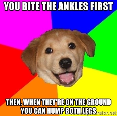 Advice Dog - You bite tHe ankles first Then, when they're on the ground you can hump both legs