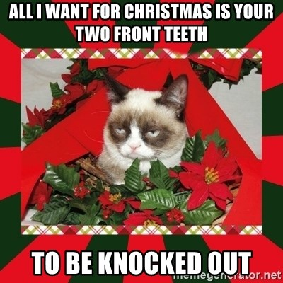 GRUMPY CAT ON CHRISTMAS - all i want for christmas is your two front teeth to be knocked out