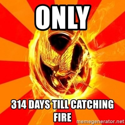 Typical fan of the hunger games - ONLY 314 DAYS TILL CATCHING FIRE