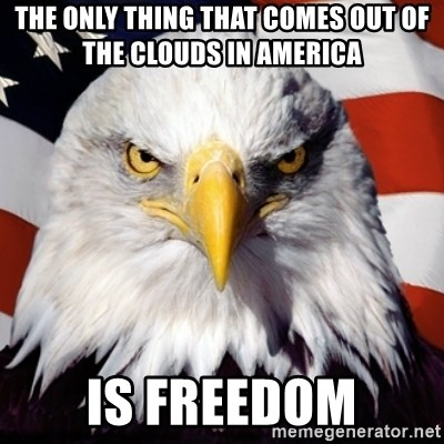 Freedom Eagle  - The only thing that comes out of the clouds in america is freedom