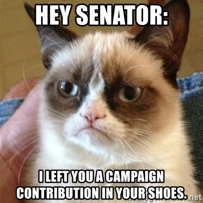 Grumpy Cat  - Hey Senator: I left you a campaign contribution in your shoes.