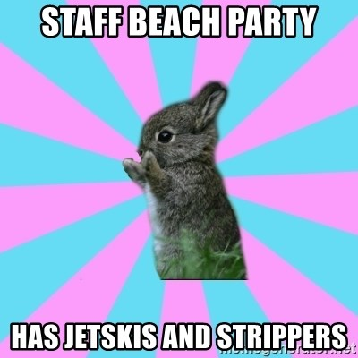 yAy FoR LifE BunNy - staff beach party has jetskis and strippers