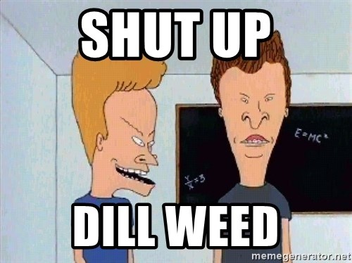 Beavis and butthead - Shut up Dill Weed