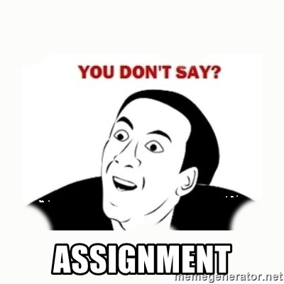 you dont say -  assignment