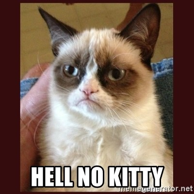 Tard the Grumpy Cat -  Hell No Kitty