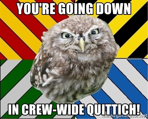 JEALOUS POTTEROMAN - You're going down in Crew-wide Quittich!