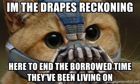 bane cat - Im the drapes reckoning HERE TO END THE BORROWED TIME THEY'VE BEEN LIVING ON