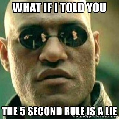 What If I Told You - what if i told you the 5 second rule is a lie