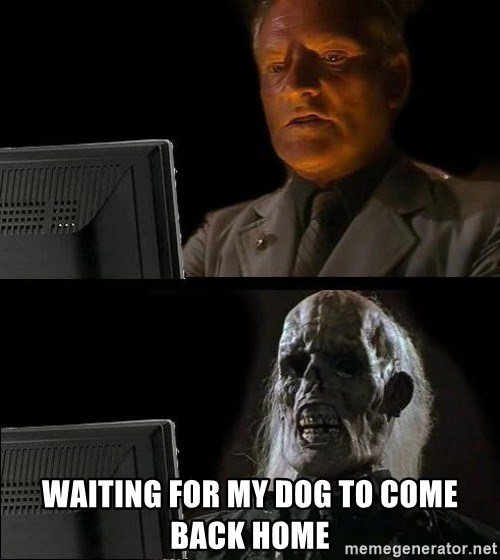 Waiting For -  waiting for my dog to come back home