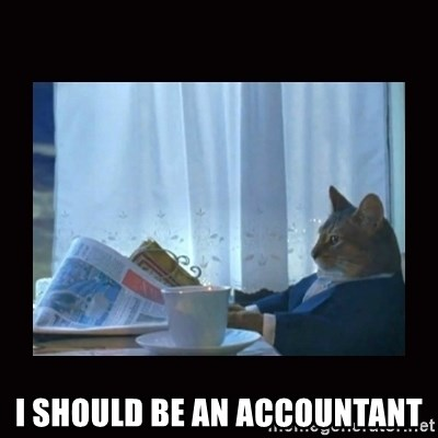 i should buy a boat cat -  I should be an accountant