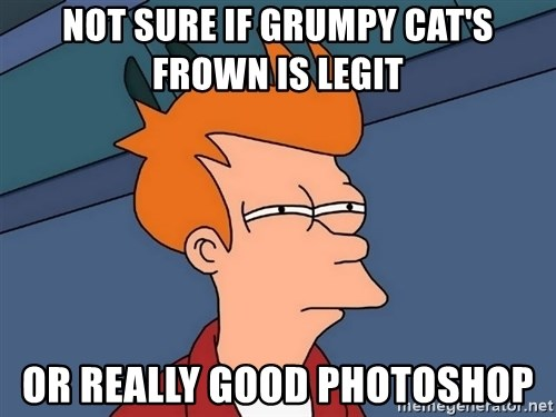 Futurama Fry - not sure if grumpy cat's frown is legit or really good photoshop