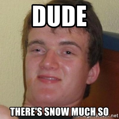 Stoner Guy - Dude There's snow much so
