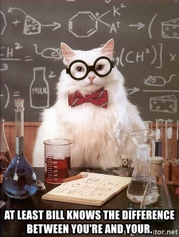 Chemistry Cat -   at least bill knows the difference between you're and your.