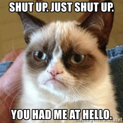 not funny cat - Shut up. Just shut up. You had me at hello.