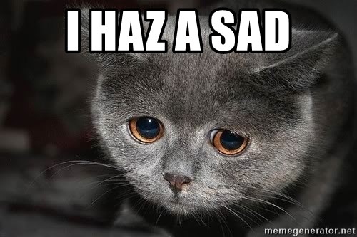 sad cat - I haz a sad