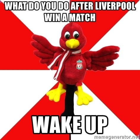Liverpool Problems - what do you do after liverpool win a match wake up