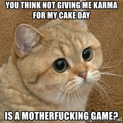 motherfucking game cat - You think not giving me karma for my cake day Is a motherfucking game?