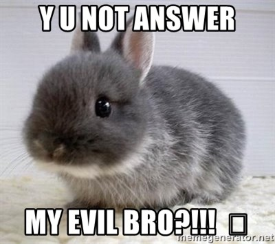 ADHD Bunny - Y U NOT ANSWER MY EVIL BRO?!!!  👿
