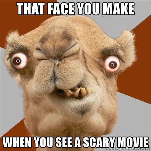 Crazy Camel lol - that face you make when you see a scary movie