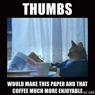 i should buy a boat cat - thumbs would make this paper and that coffee much more enjoyable