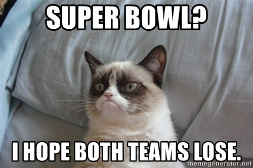 Grumpy cat good - Super bowl? I hope both teams lose.