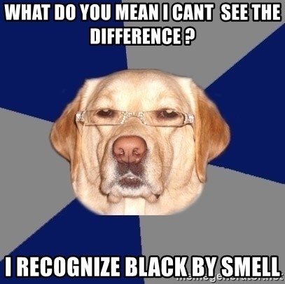 Racist Dawg - what do you mean i cant  see the difference ? I recognize black by smell