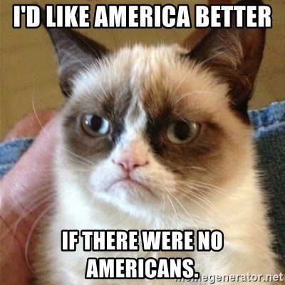 Grumpy Cat  - i'd like america better if there were no americans.