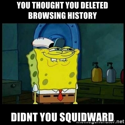 Don't you, Squidward? - you thought you deleted browsing history  didnt you Squidward