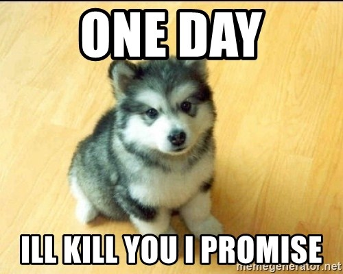 Baby Courage Wolf - one day ill kill you i promise