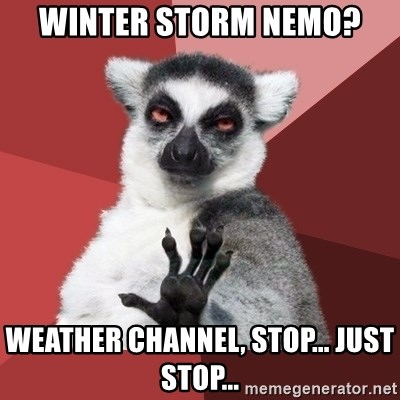 Chill Out Lemur - Winter storm nemo? Weather Channel, stop... just stop...