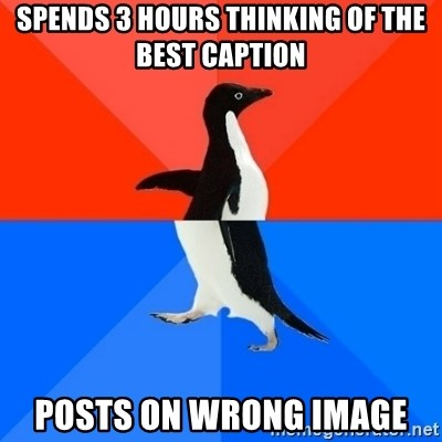 Socially Awesome Awkward Penguin - spends 3 hours THINKING of the best caption posts on wrong image