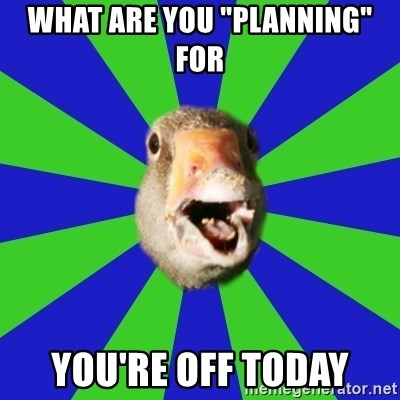 "Fibromyalgia Duck - what are you ""planning"" for you're off today"