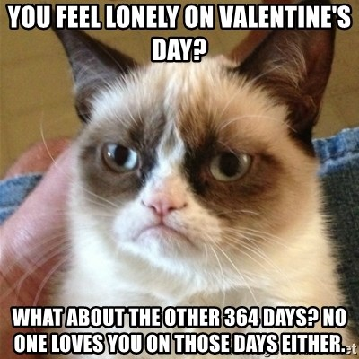 Grumpy Cat  - you feel lonely on valentine's day? what about the other 364 days? no one loves you on those days either.
