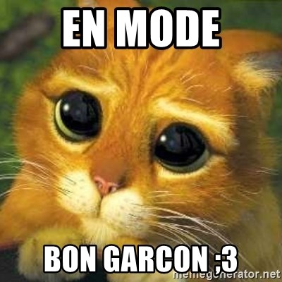 Shrek cat 2 - En MODE  BON garcon ;3