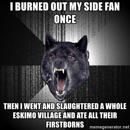 Insanity Wolf - I burned out my side fan once Then i went and slaughtered a whole eskimo village and ate all their firstborns