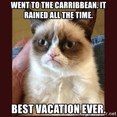 Tard the Grumpy Cat - Went To The Carribbean. It Rained All The Time. Best Vacation Ever.