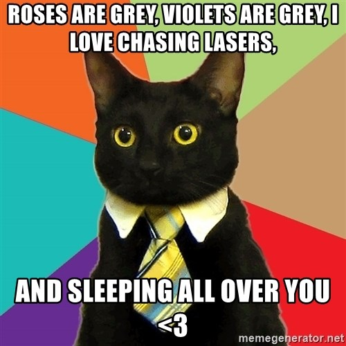 Business Cat - Roses are grey, violets are grey, i love chasing lasers, and sleeping all over you <3