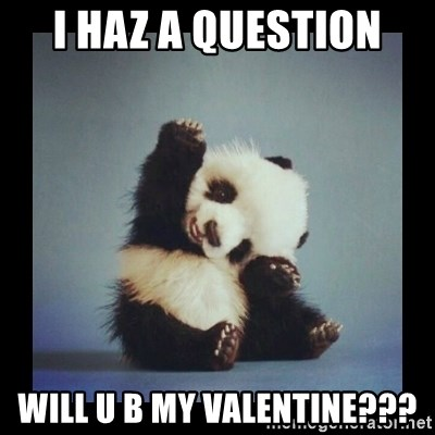 Cute Baby Panda   I Haz A Question Will U B My Valentine?