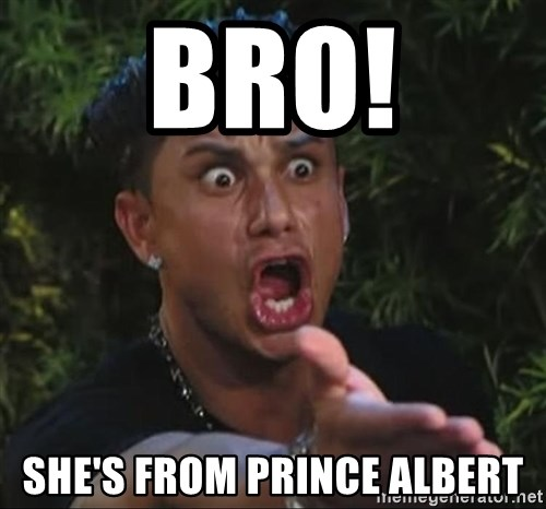 Pauly D - BRO! SHE'S FROM PRINCE ALBERT