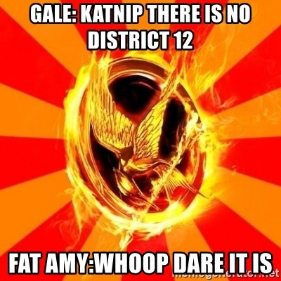Typical fan of the hunger games - GALE: KATNIP THERE IS NO DISTRICT 12 FAT AMY:WHOOP DARE IT IS