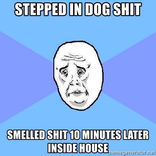 Okay Guy - stepped in dog shit smelled shit 10 minutes later inside house