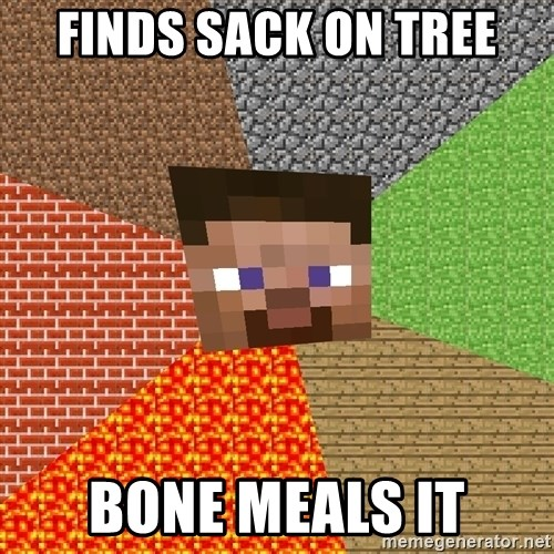 Minecraft Guy - finds sack on tree bone meals it