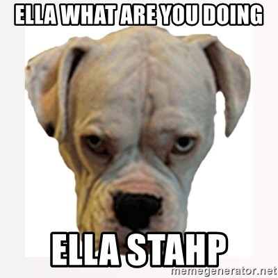 stahp guise - ella what are you doing ella stahp