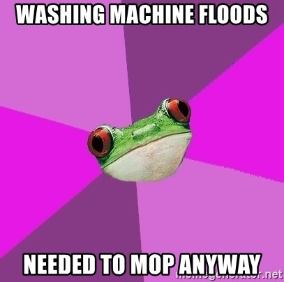 Foul Bachelorette Frog - Washing machine floods needed to mop anyway