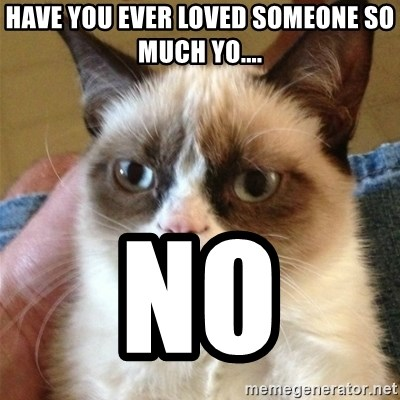 Grumpy Cat  - Have you ever loved someone so much yo.... NO