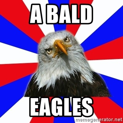 ROTC Eaglee - a bald eagles