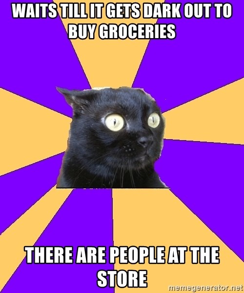 Anxiety Cat - waits till it gets dark out to buy groceries there are people at the store