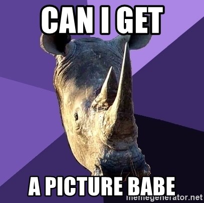 Sexually Oblivious Rhino - CAN I GET  A PICTURE BABE