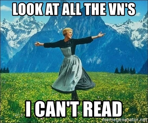 Look at all the things - look at all the vn's I can't read